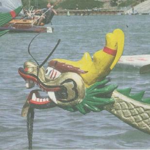 Drachenboote, die um die Wette fahren ….