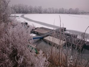 2017 Winter am Alperstedter See