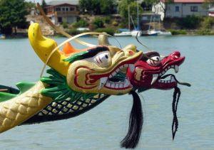 Drachenbootrennen 2016 – Anmeldung und Ablaufplan