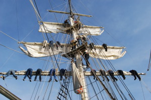 Viel Wind und Wellen – Segeltörn auf SSS GREIF